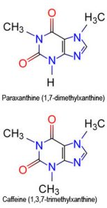 Comparing Paraxanthine and Caffeine