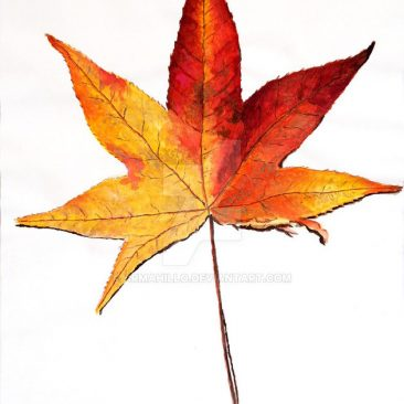 watercolor painting of a leaf